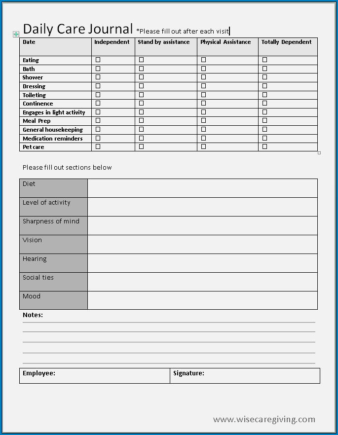 Example of Caregiver Daily Checklist Template