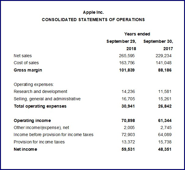 Example of Income Statement Format