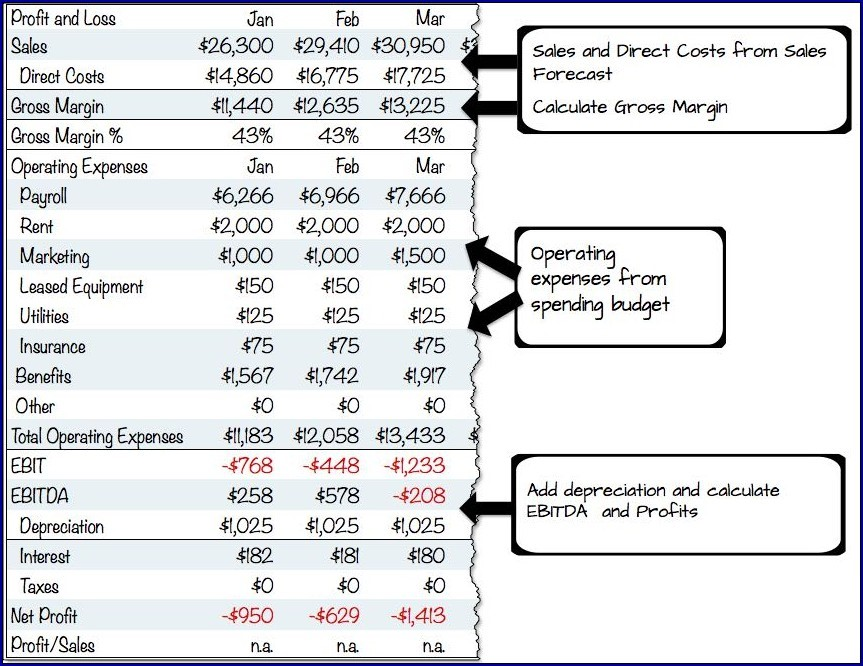 Example of Profit and Loss Projection for Business Plan