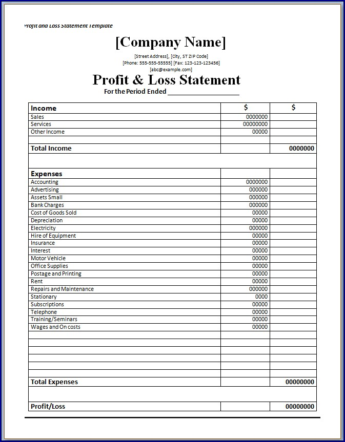 Monthly Profit and Loss Statement Sample