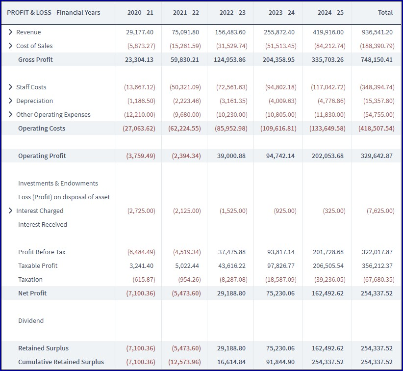 Profit and Loss Projection for Business Plan Example