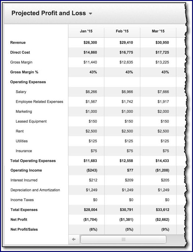 Profit and Loss Projection for Business Plan Sample