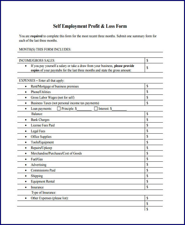 Profit and Loss for Self Employed Sample