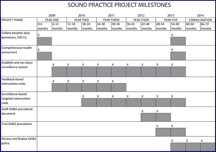 Project Timetable Example