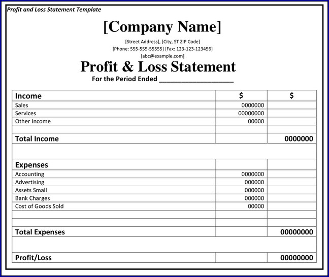 Sample of Profit and Loss Statement Format